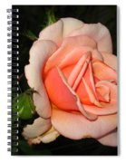 A Peach Of A Rose Spiral Notebook