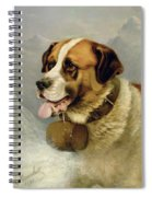 A Portrait Of A St. Bernard Spiral Notebook