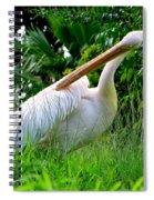 A Preening Stork Spiral Notebook