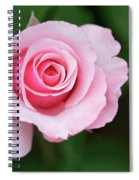 A Pretty Pink Rose Spiral Notebook