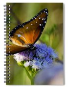 A Queen Butterfly  Spiral Notebook