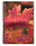 A Red Fall  Spiral Notebook