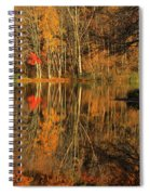 A Reflection Of October Spiral Notebook