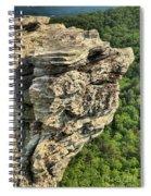 A Rocky Grin Spiral Notebook