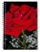 A Rose For Suzanne Spiral Notebook