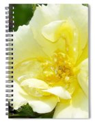 A Rose Is A Rose Rrp Spiral Notebook
