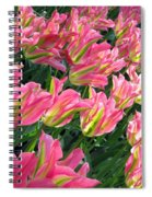 A Sea Of Pink Tulips. Square Format Spiral Notebook