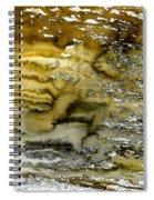 A Sea Of Raw Sienna Spiral Notebook