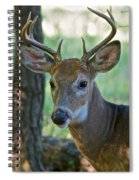 A Seven Point Profile 9752 Spiral Notebook