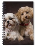 A Shihtzu And A Poodle On A Brown Spiral Notebook