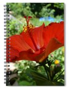 A Side Of Hibiscus Spiral Notebook