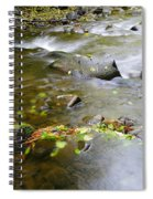 A Small Dam Of Golden Leaves  Spiral Notebook