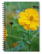A Small Dragon Fly Sitting On A Yellow Flower Spiral Notebook