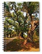 A Southern Stroll Spiral Notebook