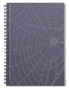 A Spider's Handiwork Spiral Notebook