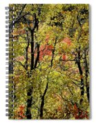 A Splash Of Fall Spiral Notebook