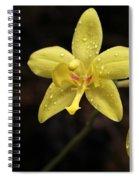 A Star Is Born Spiral Notebook