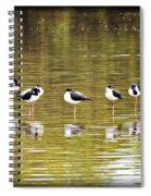 A Stilt Gathering  Spiral Notebook