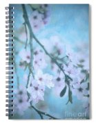 A Subtle Spring Spiral Notebook