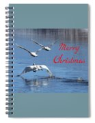 A Swan Christmas Spiral Notebook
