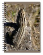 A Tail Untold Spiral Notebook