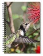 A Taste For Nectar  Spiral Notebook