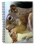 A Tasty Cone Dessert Spiral Notebook
