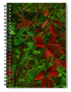 A Touch Of Christmas In Nature Spiral Notebook