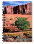 A Touch Of Green At Monument Valley Spiral Notebook