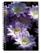 A Touch Of Lavender  Spiral Notebook
