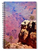 A Tree And The Canyon Spiral Notebook