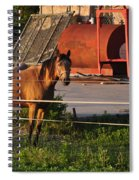A Visitor Spiral Notebook