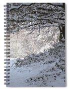A Walk In The Snow Spiral Notebook