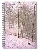 A Walk In The Snow Spiral Notebook