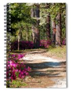A Walk In The Springtime Woods Spiral Notebook