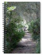 a walk about fairy wood - Mediterranean autumn forest Spiral Notebook