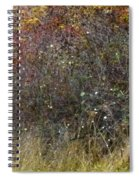 A Watchful Pheasant Spiral Notebook