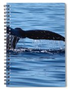 A Whale Of A Time Spiral Notebook