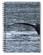 A Whale's Tale Spiral Notebook