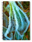 A White Trimmed Coat  Spiral Notebook