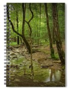 A Woodland Stream In Cades Cove No.472 Spiral Notebook