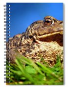 A Worm's Eye View Spiral Notebook