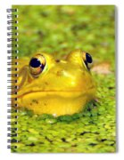 A Yellow Bullfrog Spiral Notebook