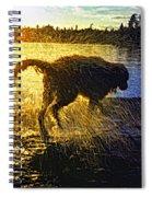 Aargh Spiral Notebook
