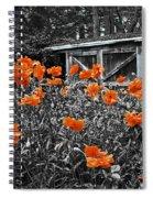 Abandoned Shed Spiral Notebook