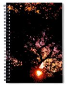 Abstract 223 Spiral Notebook