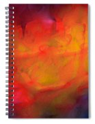 Abstract 279 Spiral Notebook