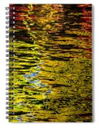 Abstract 301 Spiral Notebook