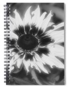 Abstract Daisy Spiral Notebook