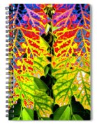 Abstract Fusion 16 Spiral Notebook